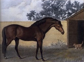 Apr 2 Godolphin Arabian by George Stubbs