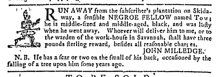 nov-19-georgia-gazette-slavery-5