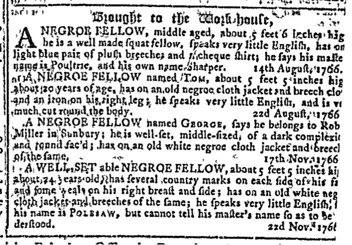 jan-7-georgia-gazette-slavery-4