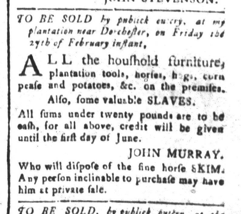 feb-13-south-carolina-and-american-general-gazette-slavery-6