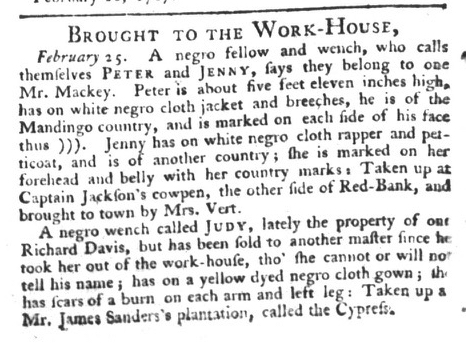 mar-3-south-carolina-gazette-and-country-journal-slavery-7
