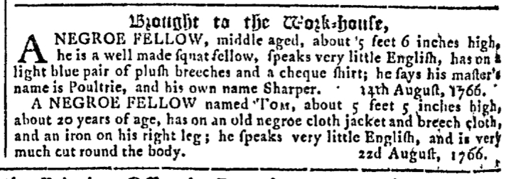 Apr 15 - Georgia Gazette Slavery 5