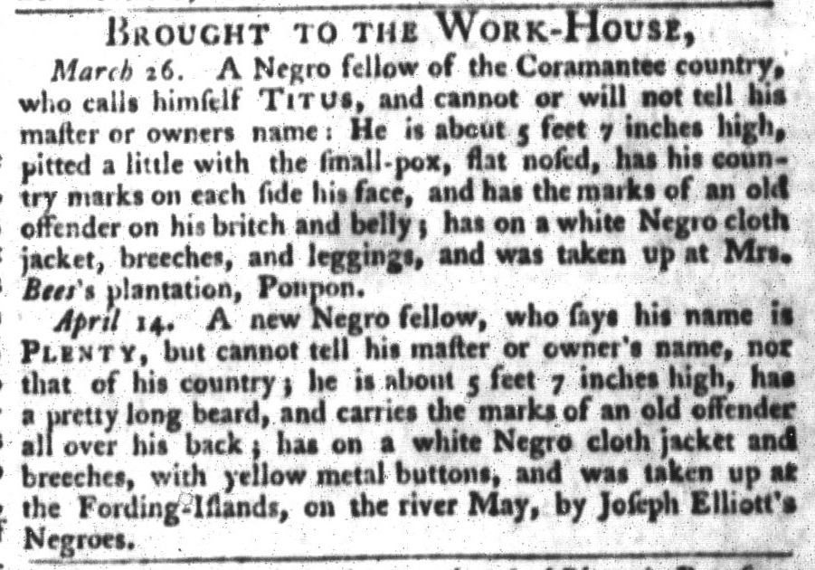 Apr 21 - South-Carolina Gazette and Country Journal Slavery 7