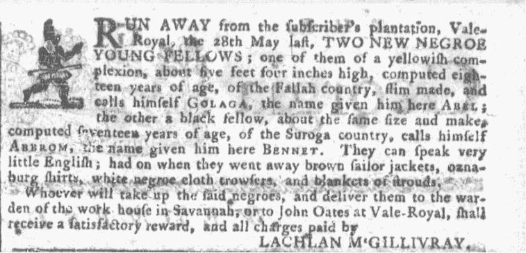 Jun 3 - Georgia Gazette Slavery 1