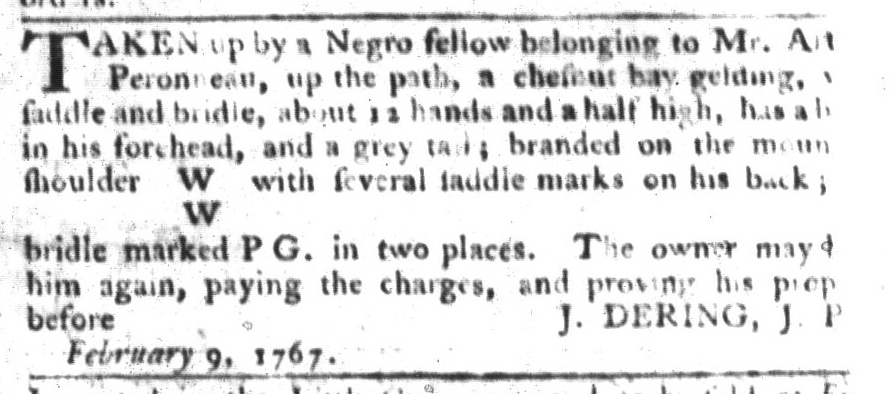 May 5 - South-Carolina Gazette and Country Journal Supplement Slavery 13
