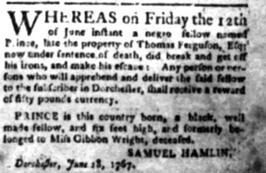 Jun 29 - South Carolina Gazette Slavery 2