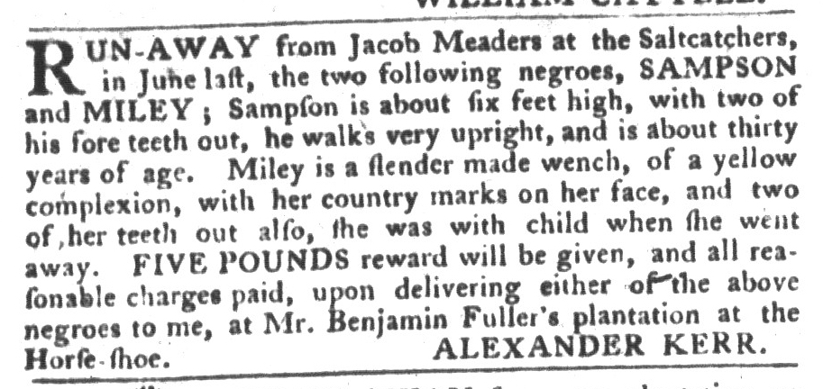 Feb 2 - South-Carolina Gazette and Country Journal Supplement Slavery 9
