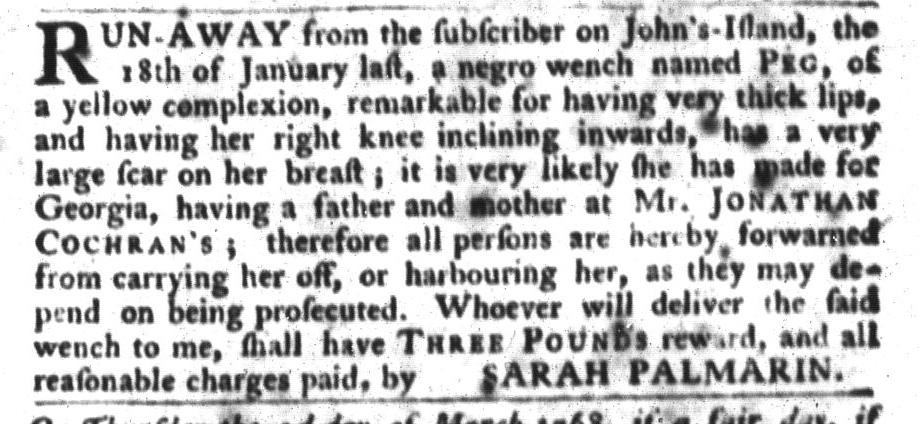 Feb 9 - South-Carolina Gazette and Country Journal Slavery 7