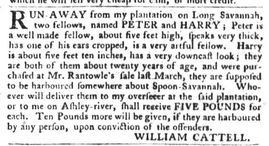 Jan 19 - South-Carolina Gazette and Country Journal Slavery 4