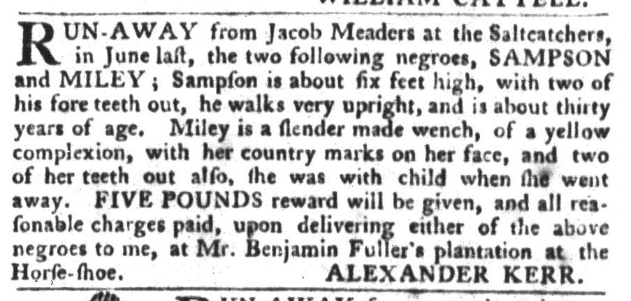 Jan 19 - South-Carolina Gazette and Country Journal Slavery 5