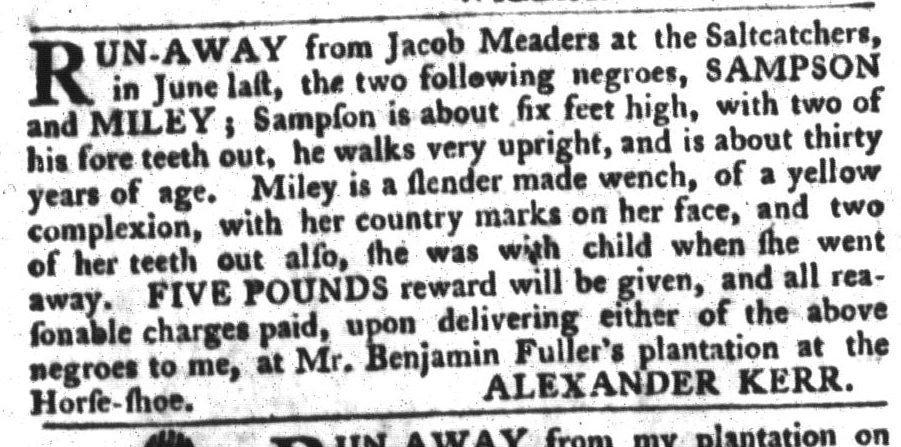 Jan 26 - South-Carolina Gazette and Country Journal Slavery 12
