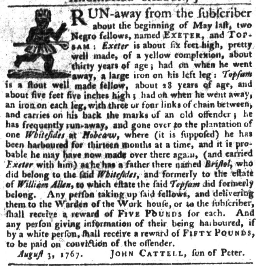Jan 26 - South-Carolina Gazette and Country Journal Supplement Slavery 6