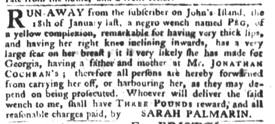 Mar 1 - South-Carolina Gazette and Country Journal Supplement Slavery 4