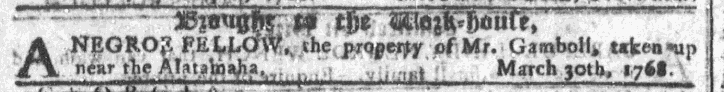 Apr 27 - Georgia Gazette Slavery 1