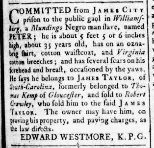 Aug 11 - Virginia Gazette Rind Slavery 2