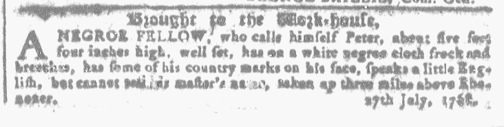 Aug 3 - Georgia Gazette Slavery 1