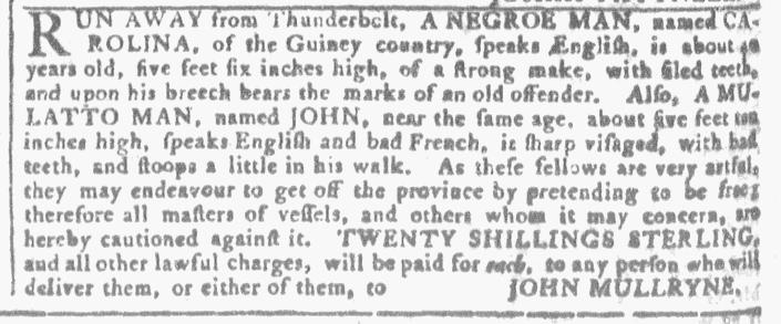 Aug 3 - Georhia Gazette Slavery 7