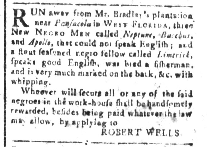 Aug 5 - South-Carolina and American General Gazette Slavery 9