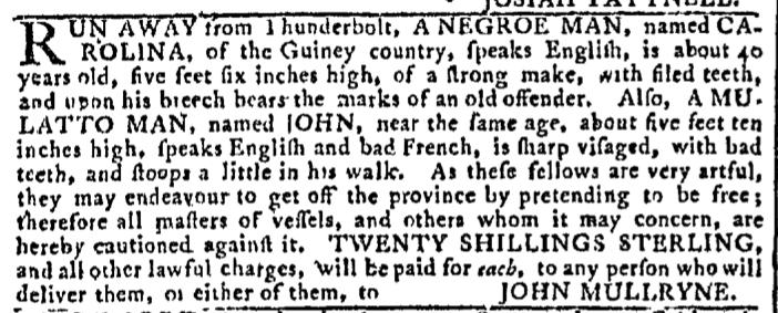 Aug 17 - Georgia Gazette Slavery 8