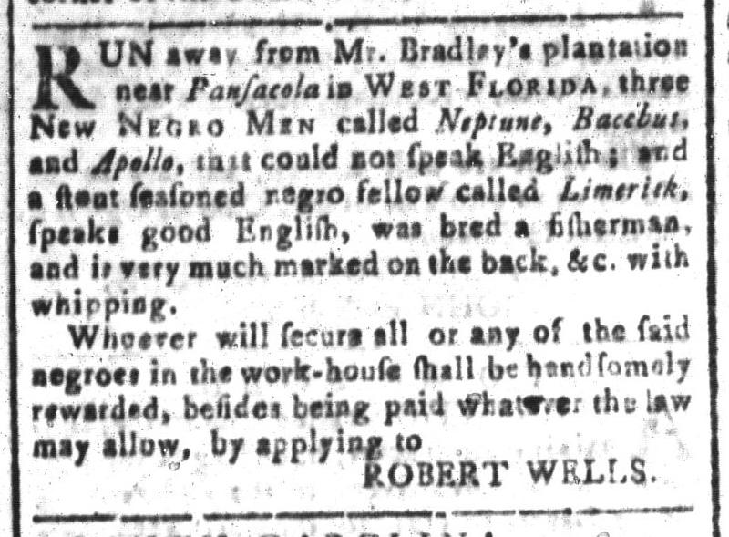 Aug 19 - South-Carolina and American General Gazette Slavery 6