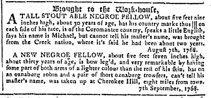 Sep 21 - Georgia Gazette Slavery 8