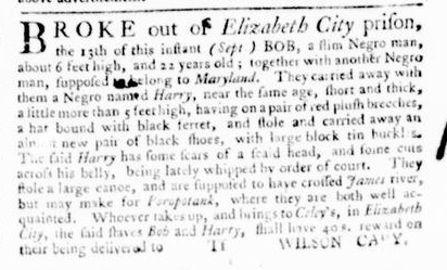 Sep 22 - Virginia Gazette Purdie and Dixon Slavery 2