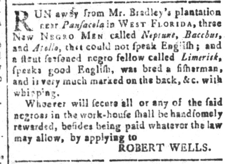 Nov 11 - South-Carolina and American General Gazette Slavery 5