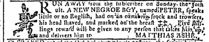 Nov 16 - Georgia Gazette Slavery 10