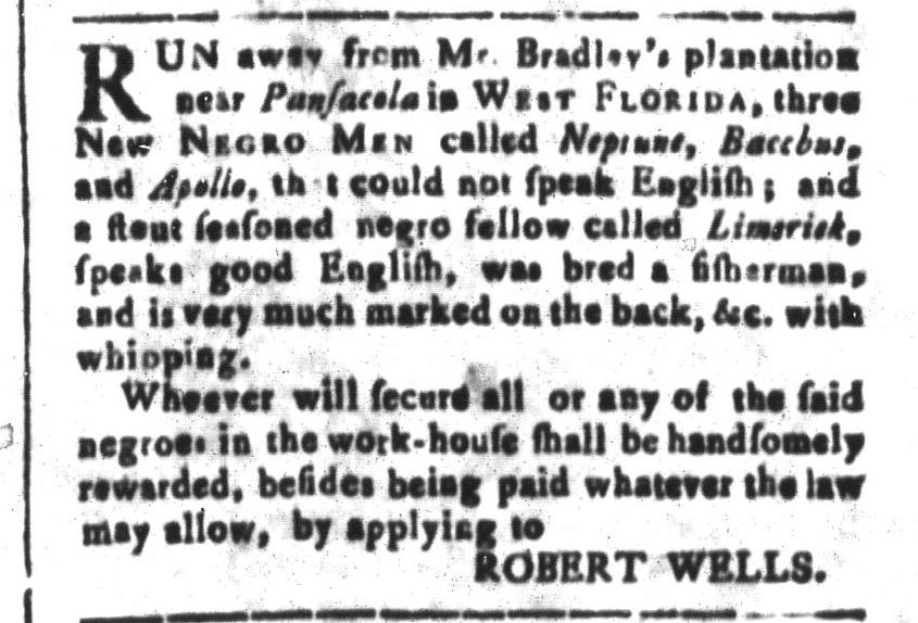 Nov 18 - South-Carolina and American General Gazette Slavery 6