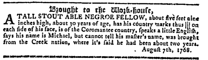 Nov 2 - Georgia Gazette Slavery 13