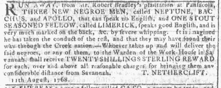 Nov 23 - Georgia Gazette Slavery 4