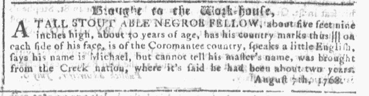 Nov 23 - Georgia Gazette Slavery 8