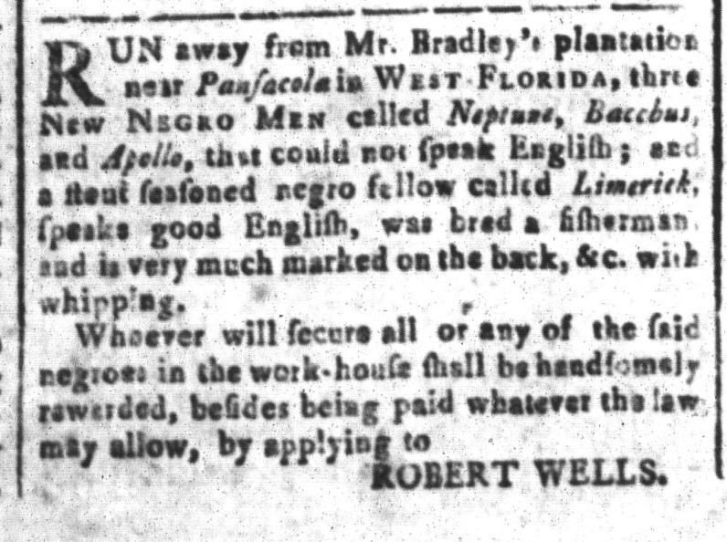 Nov 4 - South-Carolina and American General Gazette Slavery 1