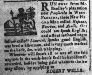 Nov 25 - South-Carolina and American General Gazette Slavery 2