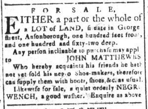 Nov 25 - South-Carolina and American General Gazette Slavery 8