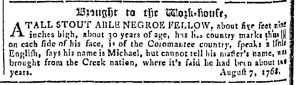 May 10 - Georgia Gazette Slavery 5