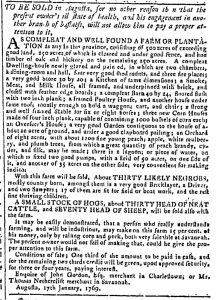 May 17 - Georgia Gazette Slavery 6