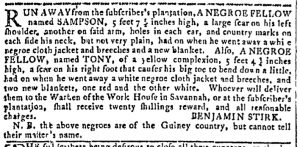 Aug 2 - Georgia Gazette Slavery 1