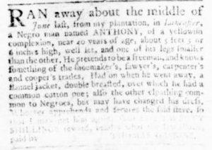 Aug 3 - Virginia Gazette Rind Slavery 5