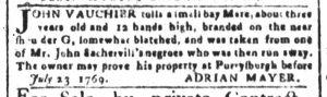 Aug 7 - South-Carolina and American General Gazette Slavery 5