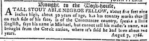Aug 9 - Georgia Gazette Slavery 8