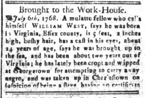 Aug 30 - South-Carolina and American General Gazette Slavery 8