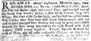 May 17 - South Carolina Gazette Slavery 4