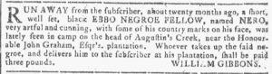 May 23 - Georgia Gazette Slavery 3