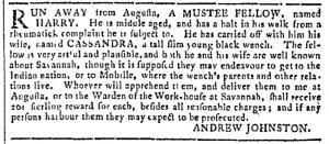 Nov 1 - Georgia Gazette Slavery 7