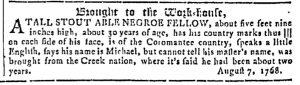 Nov 1 - Georgia Gazette Slavery 8