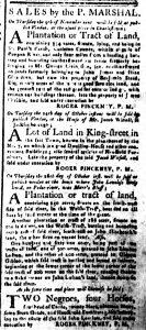Oct 23 - South-Carolina and American General Gazette Slavery 8