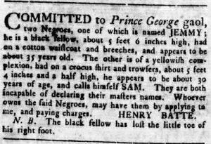 Aug 2 - Virginia Gazette Rind slavery 1
