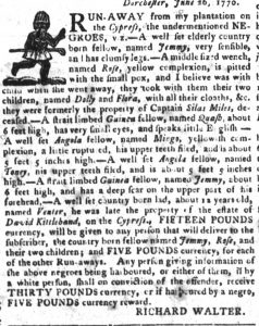 Jul 24 - South-Carolina Gazette and Country Journal supplement slavery 6