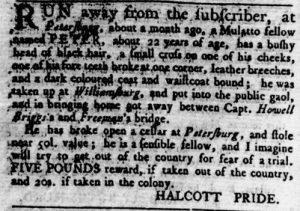Jun 14 - Virginia Gazette Rind Slavery 5